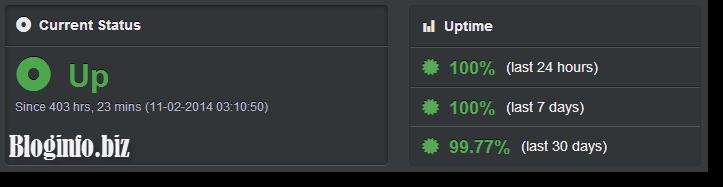 Мониторинг доступности сервера в UptimeRobot